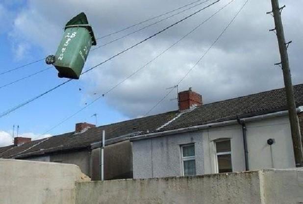 flying-bin